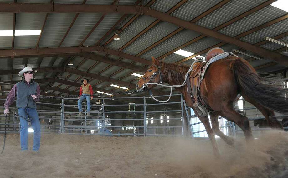 Ben Thamer works under the guidance of Lanny Leach to train a mustang in Cresson, near Fort Worth. Thamer and three other men plan to use mustangs on an Arizona-to-Canada journey. Photo: Billy Calzada, San Antonio Express-News / SAN ANTONIO EXPRESS-NEWS