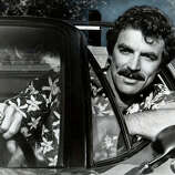 Tom Selleck -- star of the small and large screen.