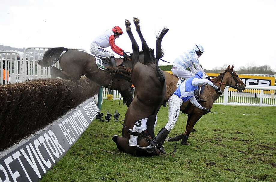 Murphy's fall: Peter Buchanan tumbles off Bold Sir Brian in The Murphy Group Steeple Chase at Cheltenham racecourse in Cheltenham, England. Photo: Alan Crowhurst, Getty Images