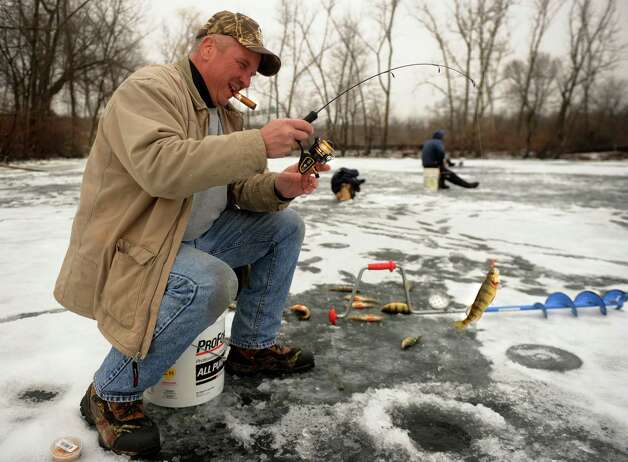 Mark Petkevich of Stratford hooks into a school of yellow perch during an afternoon of ice fishing in a cove on the Housatonic River in Derby on Tuesday, January 29, 2013. Photo: Brian A. Pounds
