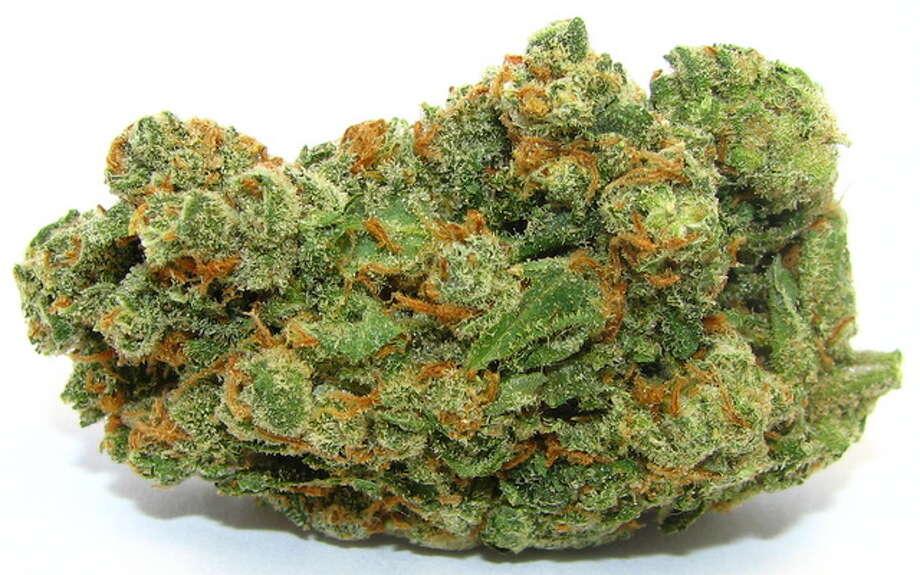 Energetic sativa Jack Herer will help plenty of medical marijuana patients power through game day. Photo: Picasa