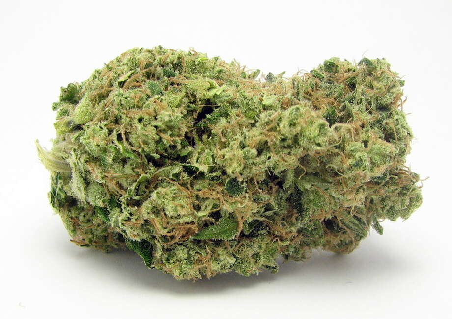 Award-winning San Jose strain Yogi Diesel. Parentage includes sativa-dominant Chemdog. Cousin: OG Kush. Photo: Picasa