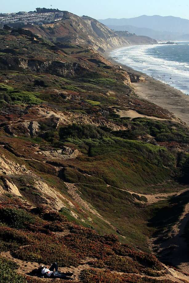 Looking at the dunes at Fort Funston in San Francisco. Photo: Liz Hafalia, The Chronicle