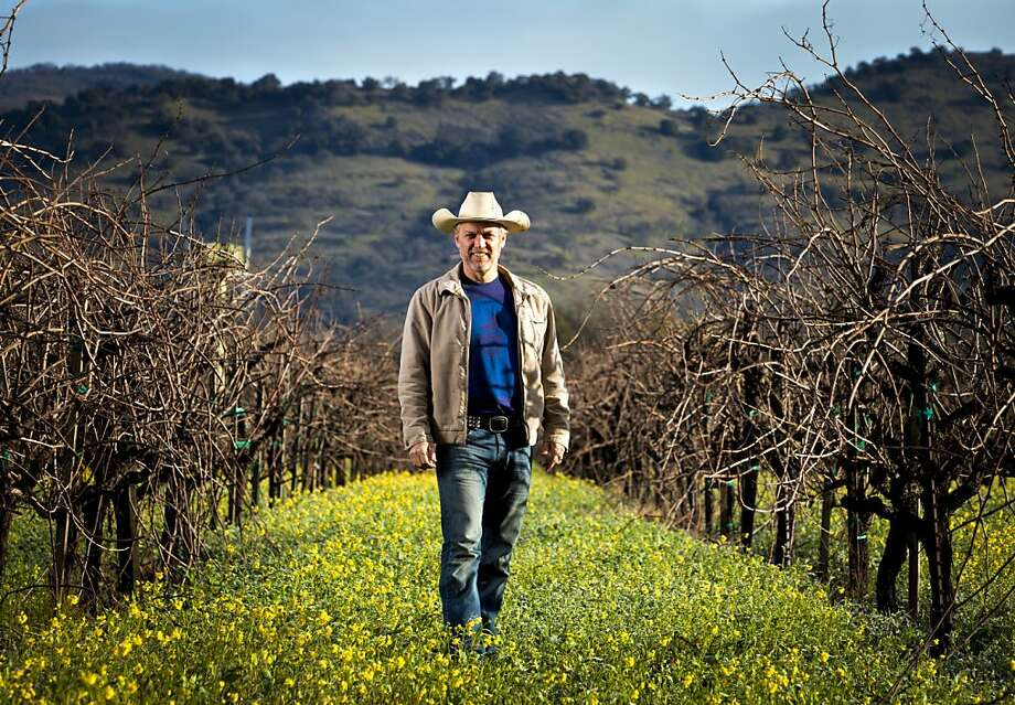Matthew Rorick of Forlorn Hope produces his Nacré Semillon, a tribute to Hunter Valley wines, from these vines at the Yount Mill vineyard near Yountville. Photo: Scott R. Kline, Special To The Chronicle