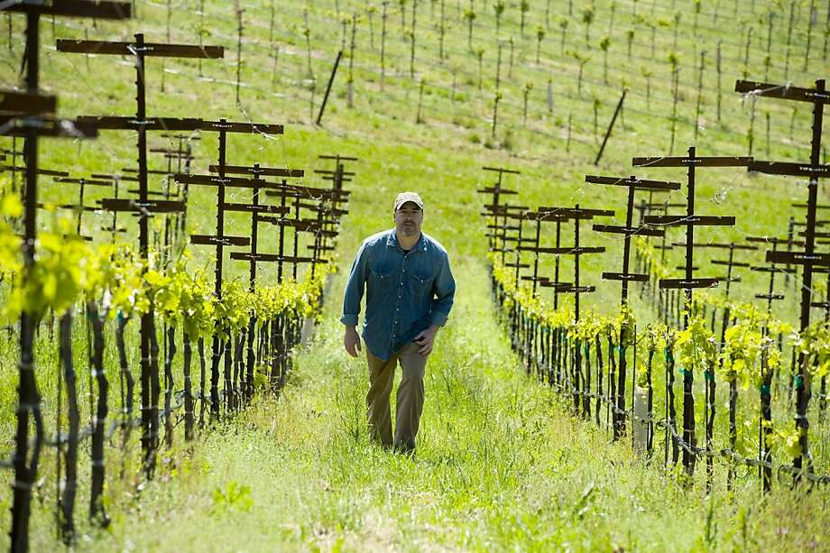 Winemaker Chris Pittenger walks the rows at Skinner Vineyards in Fair Play (El Dorado County). Photo: Brian Baer, Special To The Chronicle