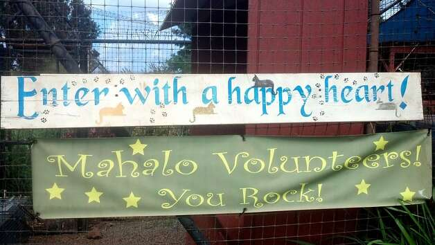 A weathered sign welcomes volunteers to the  open-air shelter of the Lana'i Animal Rescue Center. Photo: Jeanne Cooper, Special To SFGate