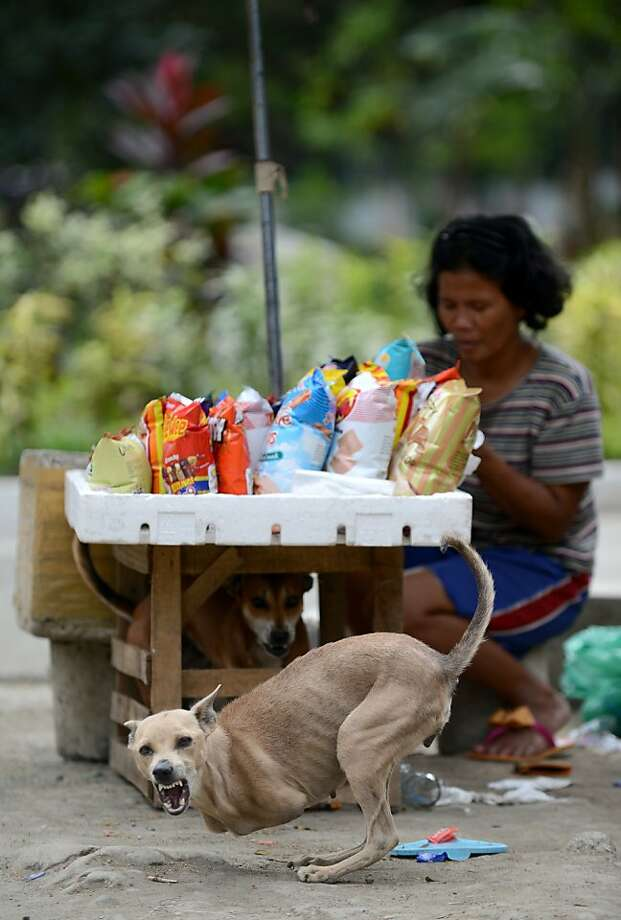 Buyer beware: Forty-nine-year-old Rita Tulipas makes about $6 a day selling snacks on the street in Manila. She might make more if her two-legged-dog Bambi was nicer to the customers. Bambi was born without forelegs. Photo: Noel Celis, AFP/Getty Images