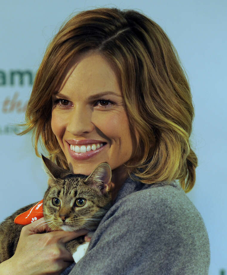 Two-time Academy Award winning actress Hilary Swank poses with a kitten at the Bideawee Animal Center in 2009. Photo: TIMOTHY A. CLARY, AFP/Getty Images / 2009 AFP