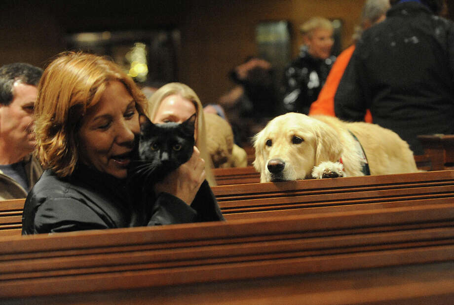 Rocco the cat and Cassie the Golden Retriever share a moment at the ASPCA Holiday blessing for the animals at Christ Church in 2009 in New York City. Photo: Brad Barket, Getty Images / 2009 Getty Images