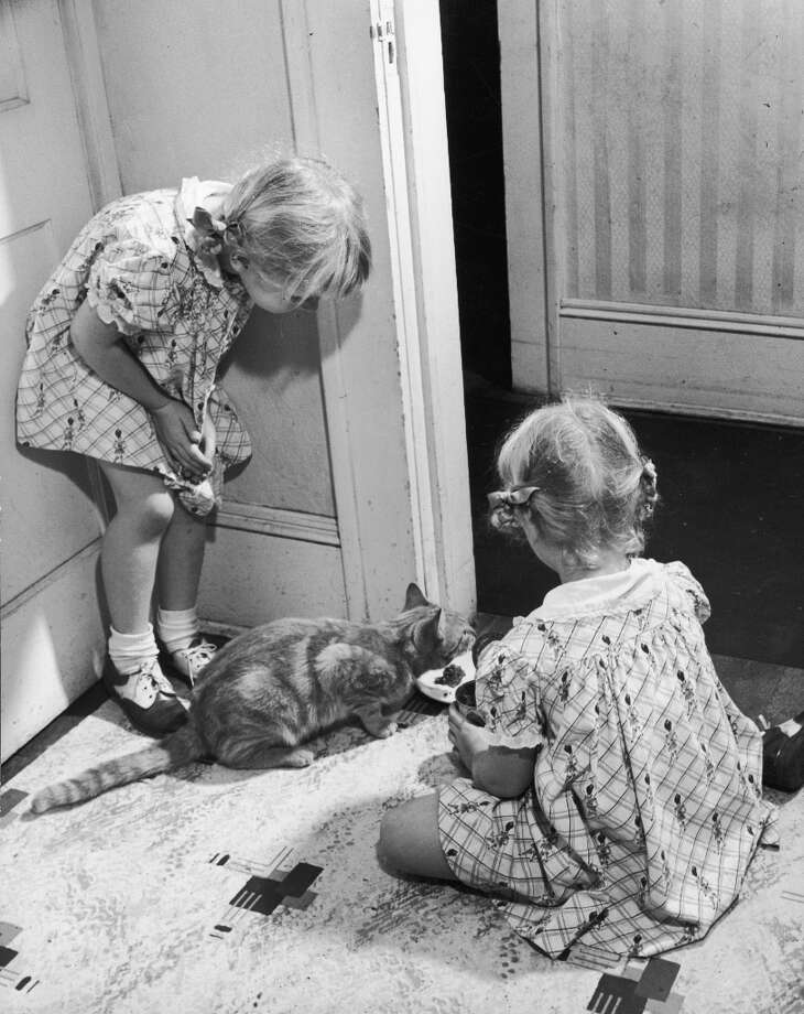 Twins Kappy & Marcy Williams watched their cat eat from a bowl, Atlanta, Georgia 1947. (Robert Wheeler/Time & Life Pictures/Getty Images) Photo: Robert Wheeler/TIME & LIFE Image / Time & Life Pictures