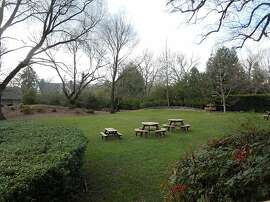 The picnic lawn at Muscardini Cellars.