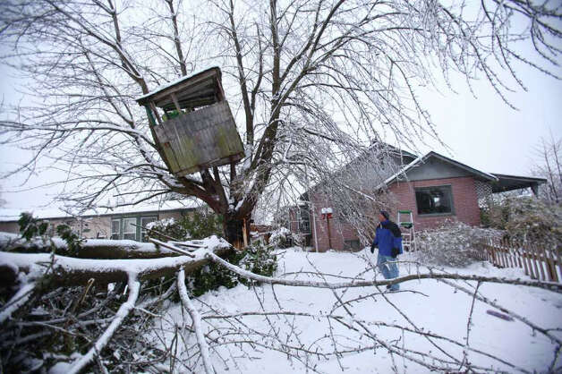 A day after the snow fell, a crippling ice storm hit the region, knocking down trees and power lines. Pictured is Flynn Elario looking at a treehouse hanging precariously near his house  after a large branch crashed down in Auburn on Thursday, January 19, 2012. Power was out in large parts of the town. Photo: JOSHUA TRUJILLO / SEATTLEPI.COM