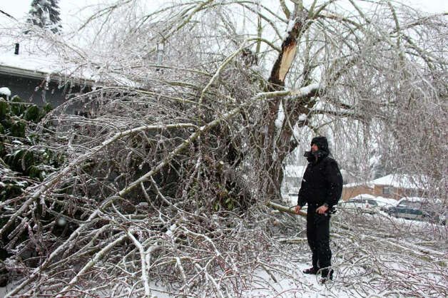 Dave Dvorak surveys a tree sitting on his home in Auburn on Thursday, January 19, 2012 as an ice storm wreaks havoc in the Puget Sound region. Photo: JOSHUA TRUJILLO / SEATTLEPI.COM