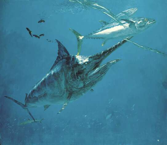 "Deep sea diver: ""Black Marlin 8"" by the late marine artist Stanley Meltzoff (1917-2006) is on view in the exhibition, ""Lure of the Ocean: The Art of Stanley Meltzoff"" at the Bruce Museum in Greenwich. Photo: Contributed Photo"
