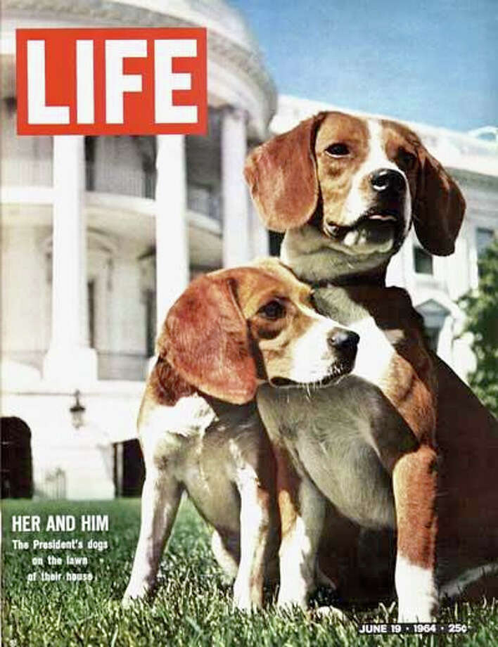 LBJ with his beloved beagles, named Him and Her. (Or Her and Him.)