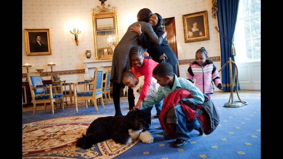 Bo and the first family.