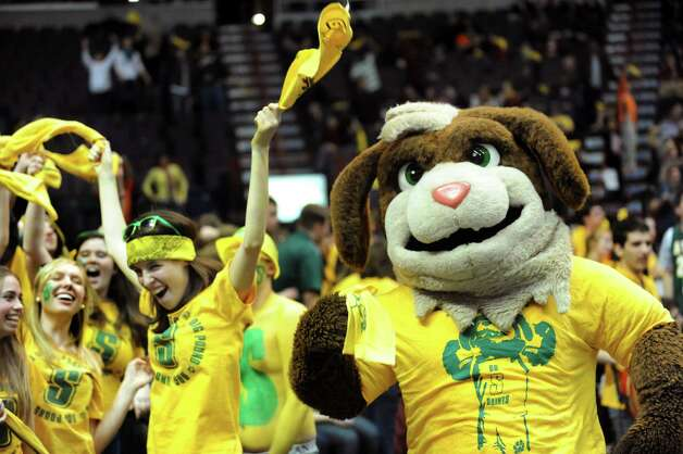 Siena's mascot, Bernie the Saint Bernard, cheers with students during their basketball game against Manhattan on Friday, Feb. 1, 2013, at Times Union Center in Albany, N.Y. Siena wins 66-63. (Cindy Schultz / Times Union) Photo: Cindy Schultz / 00020987A