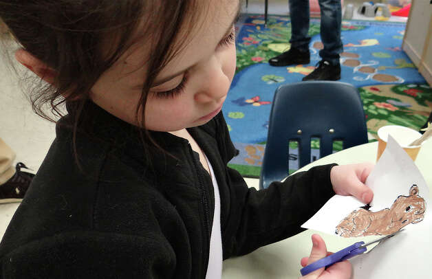 Apolline Nurit, 6, of Westport, carefully cuts out a groundhog drawing that she colored Saturday at Earthplace.  WESTPORT NEWS, CT 2/2/13 Photo: Mike Lauterborn / Westport News contributed