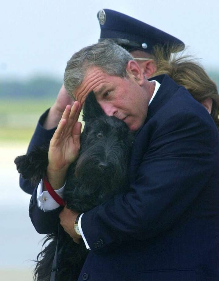 FILE - In this June 25, 2001 file photo, President Bush does his best to salute while holding his dog Barney as they get off of Air Force One at Andrews Air Force Base, Md. Barney, former White House Scottish Terrier and star of holiday videos shot during President George W. Bush's administration, has died after suffering from cancer. He was 12.  (AP Photo/Susan Walsh, File) Photo: SUSAN WALSH