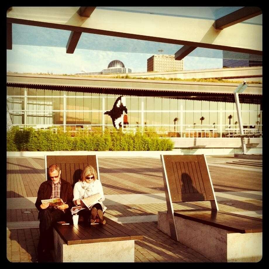 Shadow on the chair. - Luanne Dietz @luannedietz