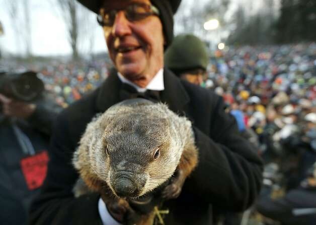 Groundhog Club co-handler Ron Ploucha holds the weather predicting groundhog, Punxsutawney Phil, after the club said Phil did not see his shadow and there will be an early spring, on Groundhog Day, Saturday, Feb. 2, 2013, in Punxsutawney, Pa. Photo: Keith Srakocic, Associated Press