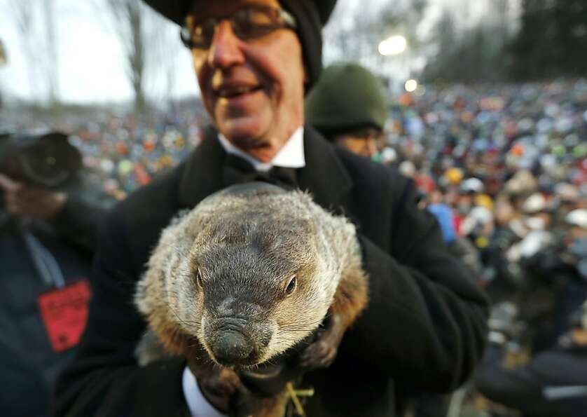 Groundhog Club co-handler Ron Ploucha holds the weather predicting groundhog, Punxsutawney Phil, aft