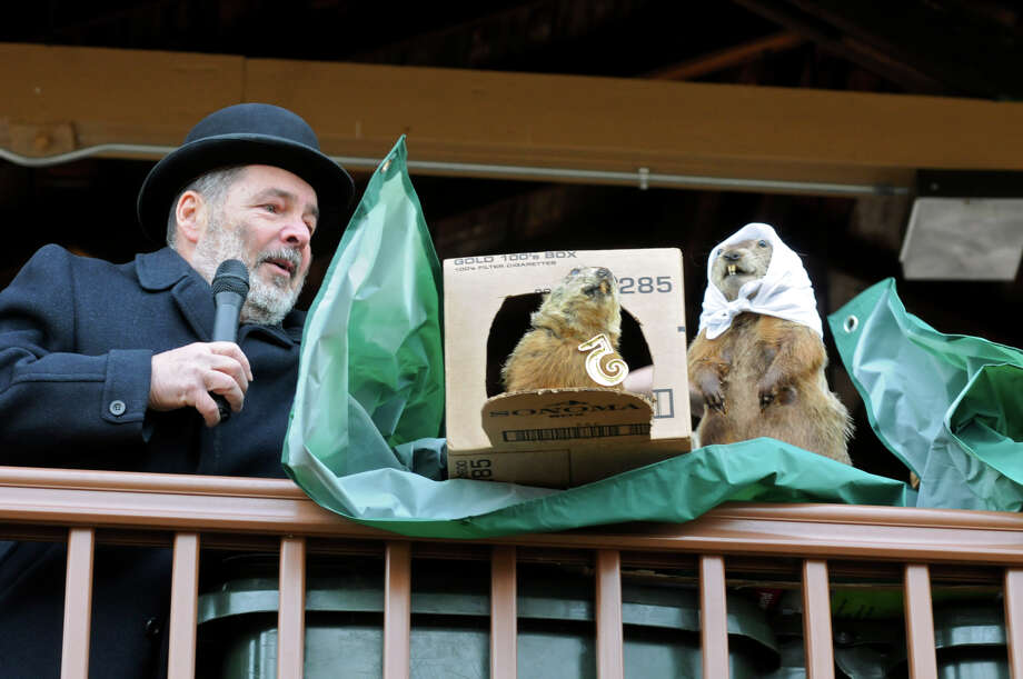 Pine Grove Grundsau Lodge No. 5, Haaptmann (Headman) Donald Potts, left, unveils the cover over stuffed groundhogs Groundhog Grover, center, and his bride Sweet Arrow Sue, during the annual Groundhog Day Celebration at Sweet Arrow Lake County Park Clubhouse, Saturday, Feb. 2, 2013, in Pine Grove, Pa. Groundhog Grover predicted six more weeks of winter. Photo: Jacqueline Dormer, AP / The Republican-herald