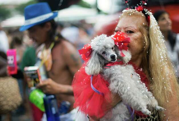 A woman holds her dog wearing carnival costume during the animals carnival, in Copacabana beach in Rio de Janeiro on Monday. AFP PHOTO / CHRISTOPHE SIMON Photo: CHRISTOPHE SIMON, Getty / 2013 AFP