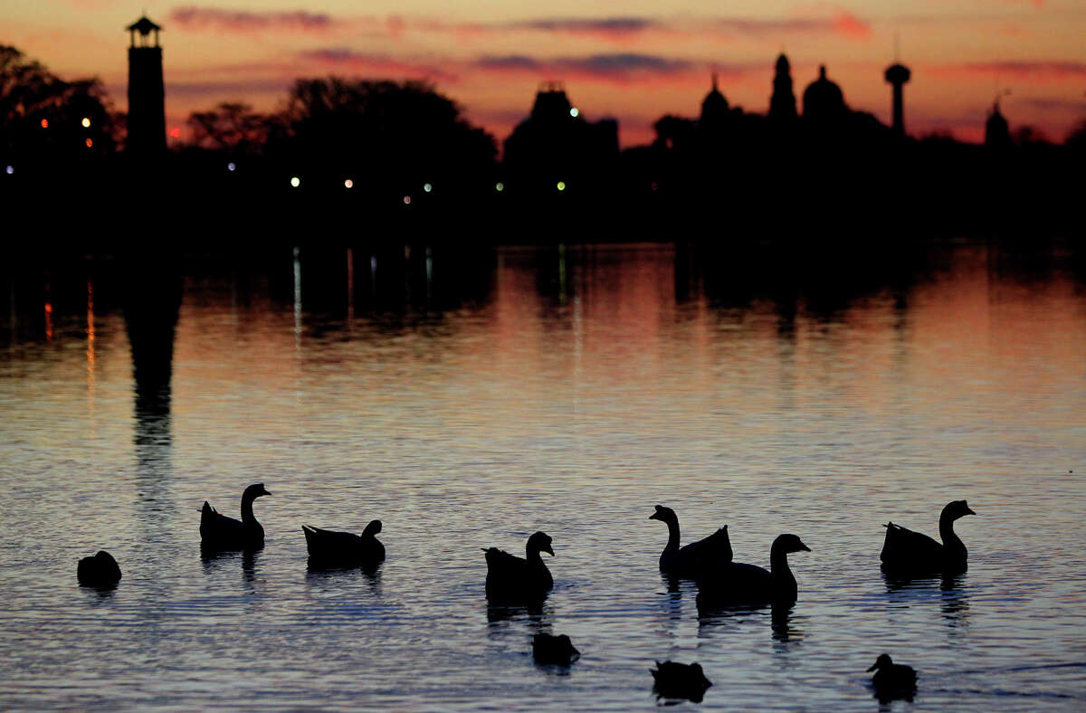 Geese and other water fowl paddle around at sunrise Wednesday January 16, 2013 at Woodlawn Lake. Wednesday's forecast calls for highs in the mid 50s with warmer temperatures later this week.
