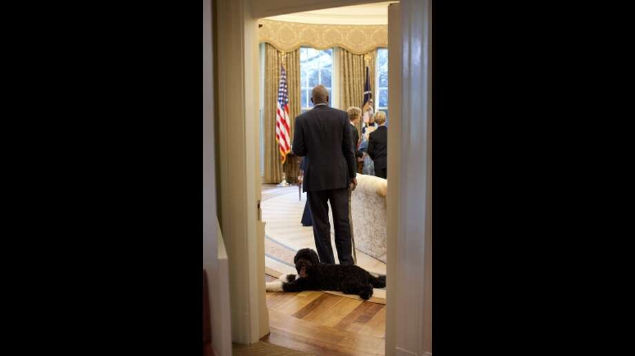 Bo in the Oval Office.