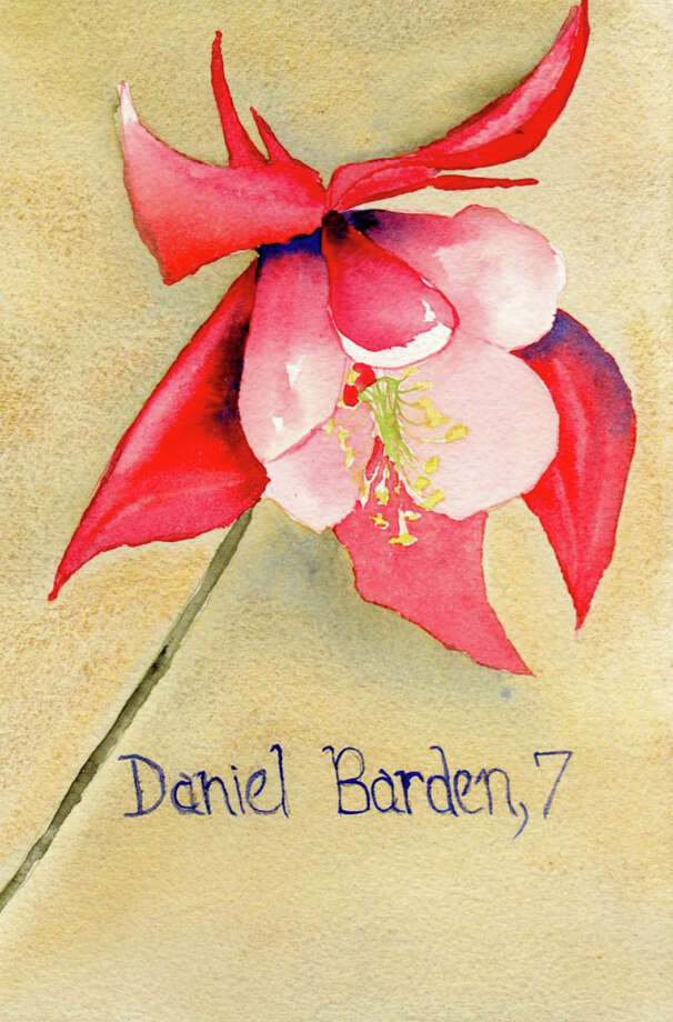 Painting for Sandy Hook victim Daniel Barden, age 7, by Pamela Hollinde, a substitute art teacher at Greenville Elementary.  Hollinde created 26 watercolor flower paintings as a way to memorialize the victims of Sandy Hook in Newtown, Conn. She sent the paints down to Newtown this this week. (Pamela Hollinde)