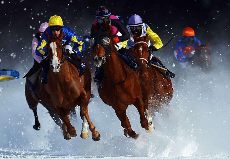 Tepmokea ridden by Shane Kelly (L) leads the field into the final turn during the Grand Prix Guardaval Immobilien race at the White Turf horse racing meeting held on the frozen Lake St Moritz on February 3, 2013 in St Moritz, Switzerland. Photo: Lars Baron, Bongarts/Getty Images
