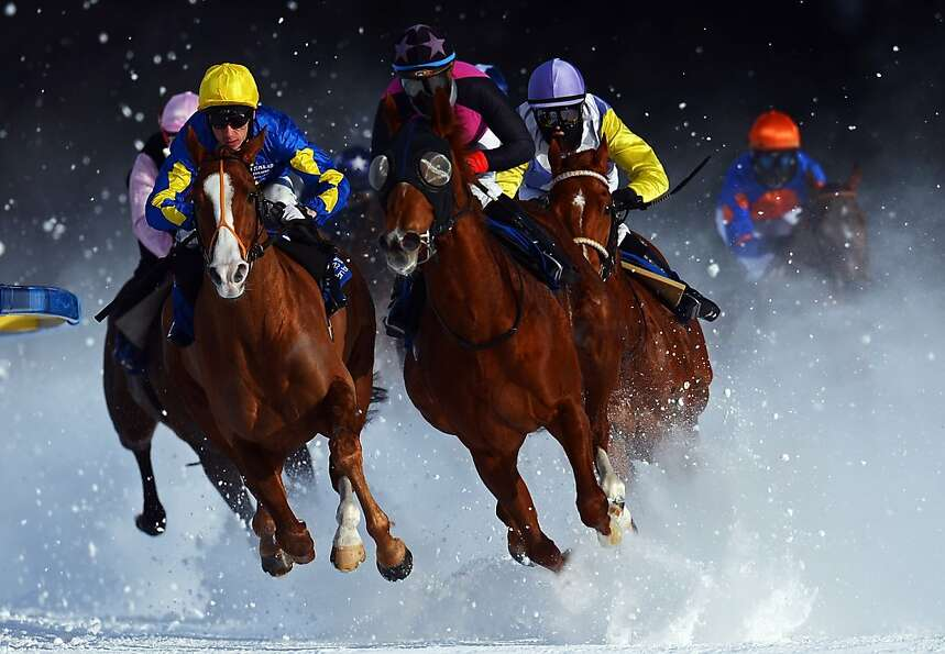 Tepmokea ridden by Shane Kelly (L) leads the field into the final turn during the Grand Prix Guardav