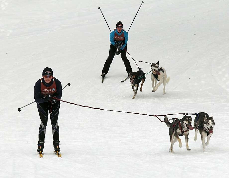 The dog skijoring race at Wirth Park as part of the Minneapolis Park Board sponsored Loppet activities. Skiers and their dogs made their way down the hills of Wirth Park, Sunday, Feb. 3, 2013 in Minneapolis. Photo: Marlin Levison, Associated Press