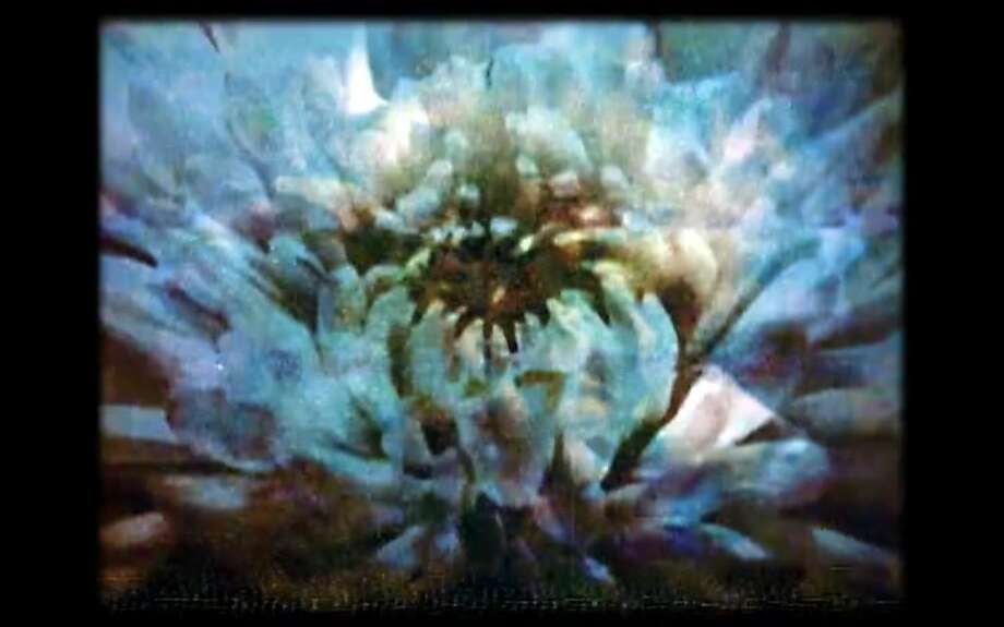 Mary Helena Clark's experimental films often invite different interpretations of static images. Photo: S.F. IndieFest