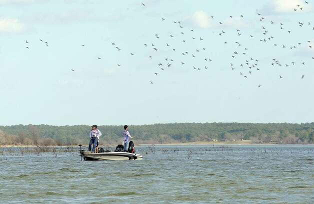 Lumberton High School angling team of Josh Wellons and Dalton Tomplate look for the big bass as ducks cover the water at the Premier Yamaha's Lumberton High School Open on Saturday, February 2, 2013, at Lake Sam Rayburn. Photo taken: Randy Edwards/The Enterprise Photo: Randy Edwards