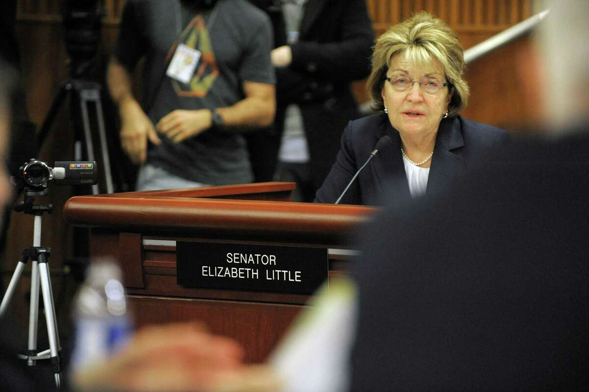 Senator Betty Little asks a question of Joe Martens, the DEC commissioner, during a joint legislative budget hearing on the environment on Monday, Feb. 4, 2013 in Albany, NY (Paul Buckowski / Times Union)