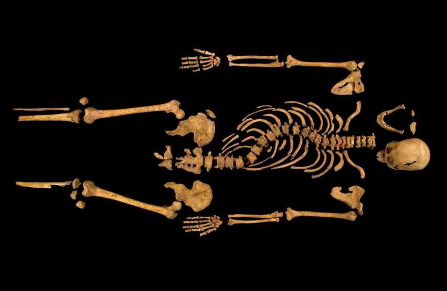 "Undated photo made available by the University of Leicester, England, Monday Feb. 4 2013  of the remains  found underneath a car park last September at the Grey Friars excavation in Leicester, which have been declared Monday  ""beyond reasonable doubt"" to be the long lost remains of England's King Richard III, missing for 500 years.  Richard was immortalized in a play by  Shakespeare as a hunchbacked usurper who left a trail of bodies — including those of his two young nephews, murdered in the Tower of London — on his way to the throne. (AP Photo/ University of Leicester) Photo: University Of Leicester"