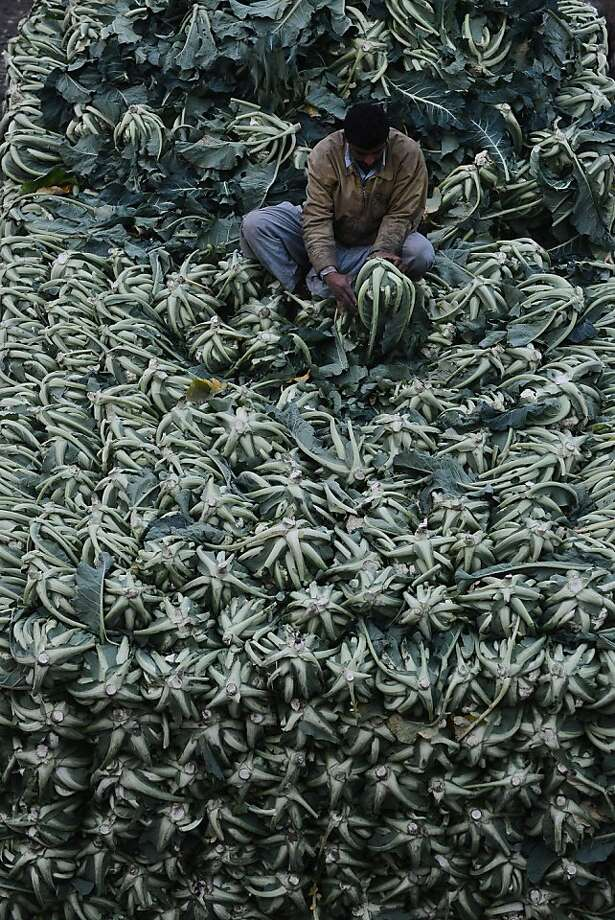 A Pakistani man arranges cauliflowers at a vegetable market in Lahore on February 4, 2013. Year-on-year inflation stood at 6.9 percent in November, the State Bank of Pakistan said in a statement, a faster fall than had been estimated. Food inflation dropped to 5.3 percent and non-food inflation to 8.1 percent. Photo: Arif Ali, AFP/Getty Images