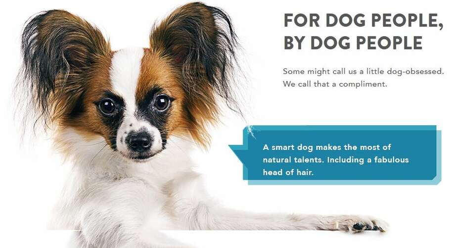 Dognition is a new online set of tools and games for better understanding your dog and contributing to the scientific understanding of them.