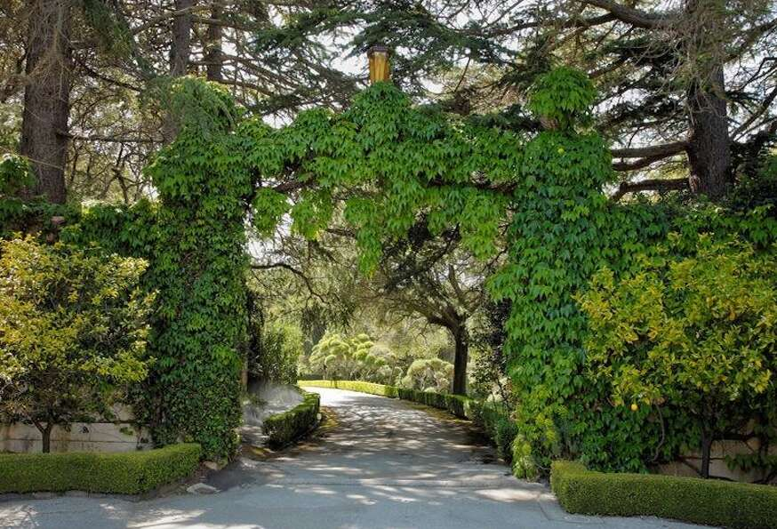Gorgeous ivy covered entrance archway