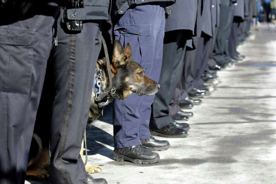 Police officers line at attention along with Herc,  k-9 dog, as pallbearers carry the casket of former Buffalo Police Officer Patricia Parete during funeral services in Buffalo, N.Y., Wednesday, Feb. 6, 2013. Parete,  was shot and paralyzed while on duty six years ago. She died last Saturday at her Niagara County home.  Parete and another Buffalo police officer were shot in December 2006 after responding to a fight at a convenience store. One of the bullets hit Parete in the chin and lodged in her spine. The other officer also survived. The man who shot them, Varner Harris Jr., is serving 30 years to life in a state prison. Photo: David Duprey, AP / AP