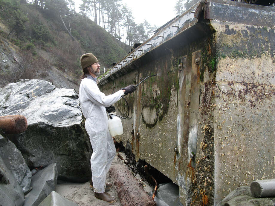 Workers decontaminate algae growth areas on side of the dock discoved on a beach in the Olympic National Park with 30 percent bleach spray.