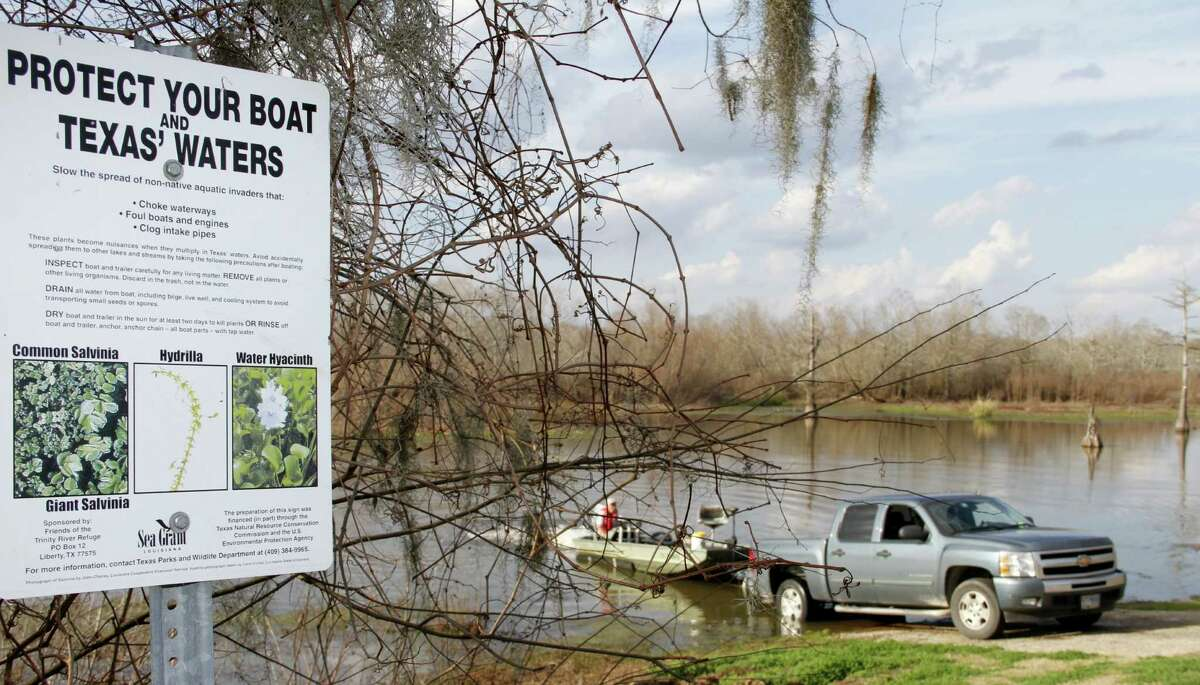 Efforts to educate boaters are aimed at staunching the spread of the invasive species by boaters who inadvertently transfer the vegetation on boats and trailers.