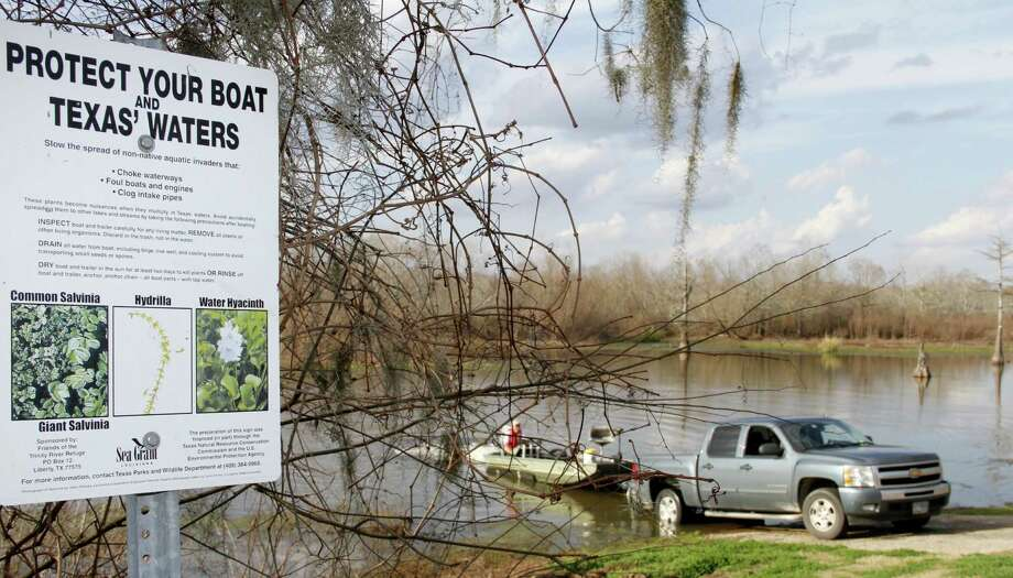 Efforts to educate boaters are aimed at staunching the spread of the invasive species by boaters who inadvertently transfer the vegetation on boats and trailers. Photo: Picasa