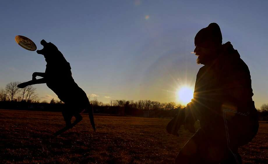 "Rex Brodie and his dog ""Ebby"" play with a flying disc on the athletic fields at Suffield Academy in Suffield, Conn. in the late afternoon sun Wednesday, Feb. 6, 2013. (AP Photo/The Republican, Don Treeger) Photo: Don Treeger, Associated Press"