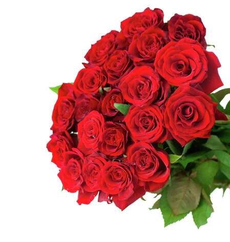 Keep those roses blooming longer. (Fotolia.com) Photo: Subbotina Anna / Subbotina Anna