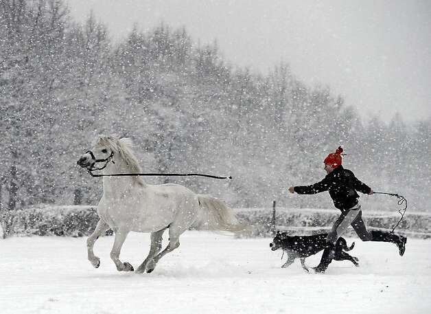 A young girl is pictured with her dog and a pony as it snows near Warsaw, Poland on February 7, 2013.  Photo: Janek Skarzynski, AFP/Getty Images