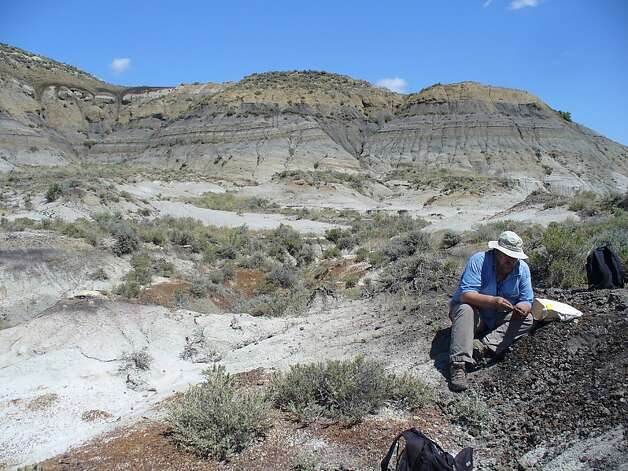 Paul Renne collects volcanic ash last year in a Montana coal bed, part of his research into dinosaurs and what killed them. Photo: Courtney Sprain, Associated Press