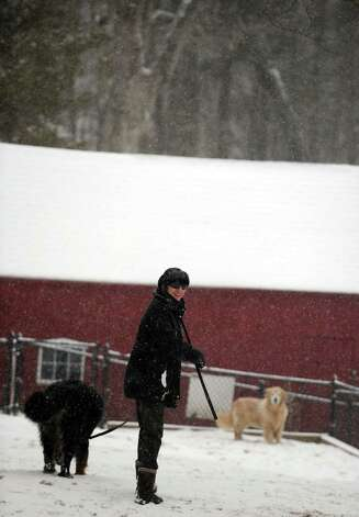 Terry Ritchie, of Newtown, takes her dogs, Abe, left, and Hudson, to the dog park in Shelton, Conn. in the morning Friday, Feb. 8, 2013 before heavy snow accumulation makes travel impossible. Photo: Autumn Driscoll
